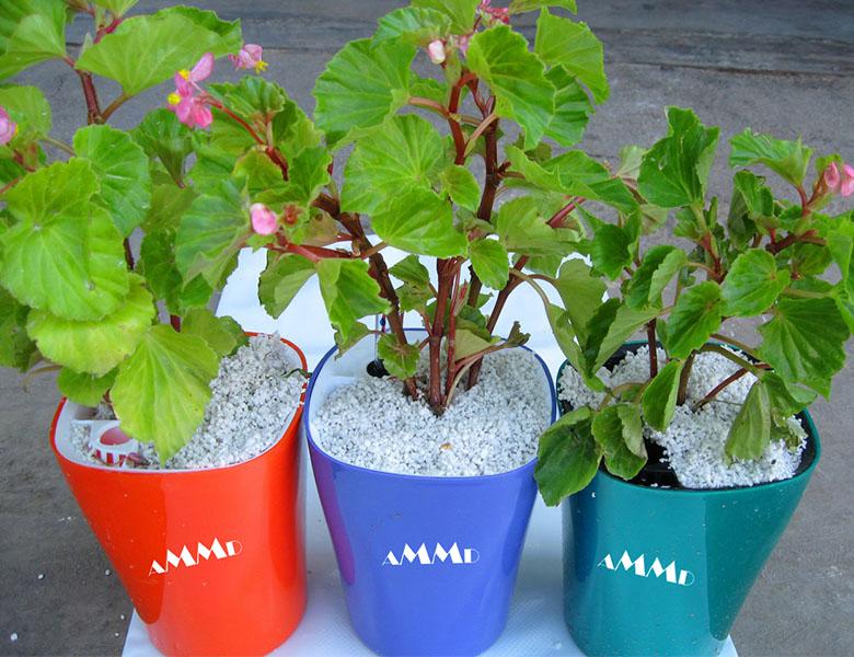perlite in pot soil agriculture gardening perlite producer supplier iran